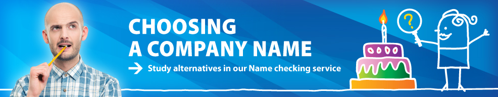 Name checking service for companies
